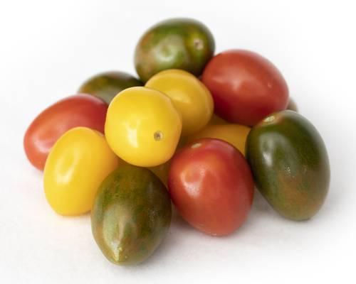 Tomato Mix Color